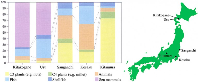 Fig. 08 - Analysis of isotopes from human bones from five Jomon sites.
