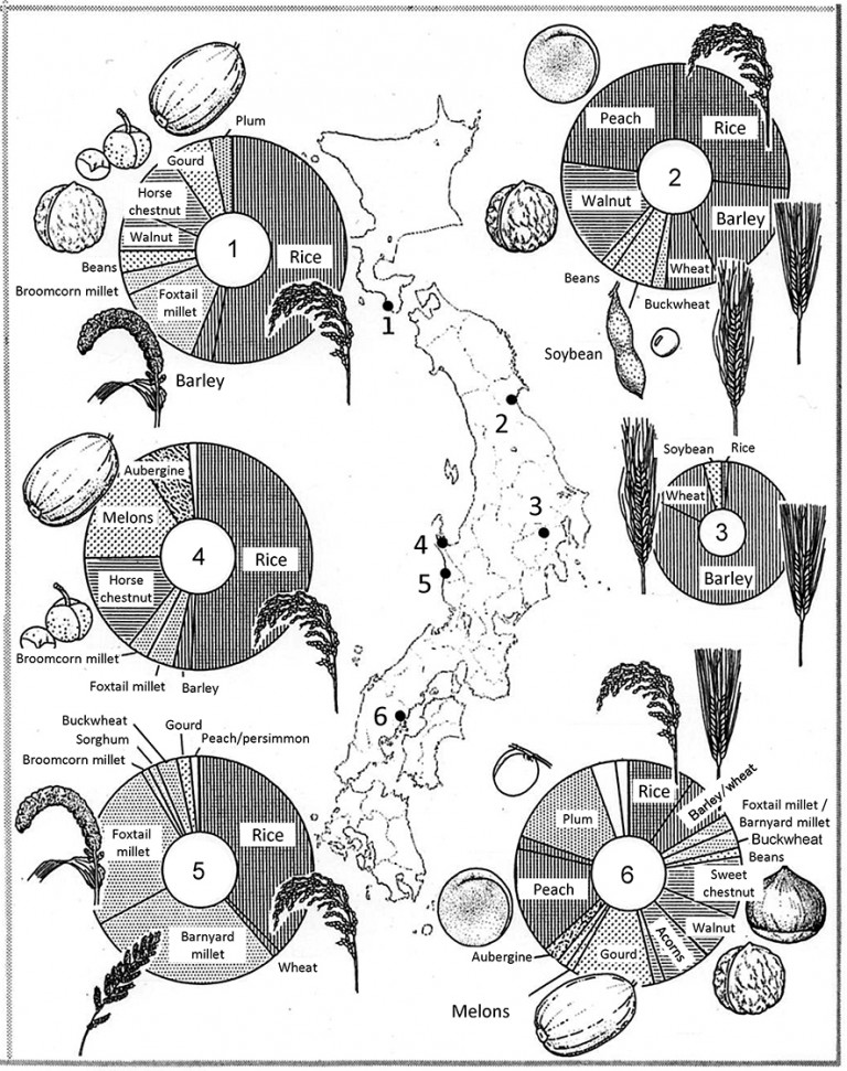 Fig. 01 - Proportions of foodstuffs from sites across Japan