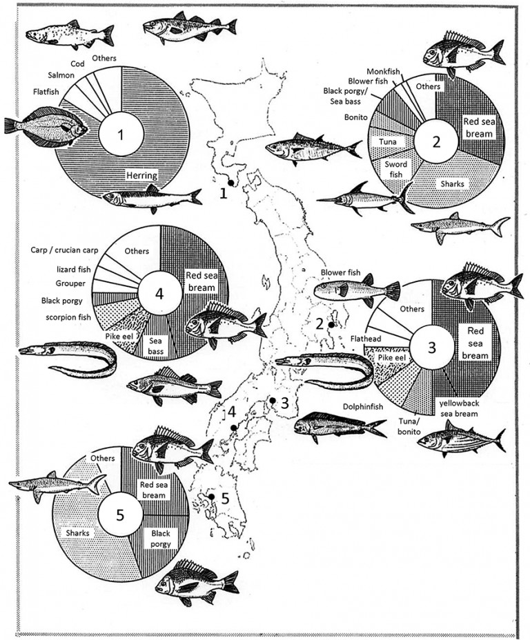 Fig. 03 - Proportions of fish from sites across Japan