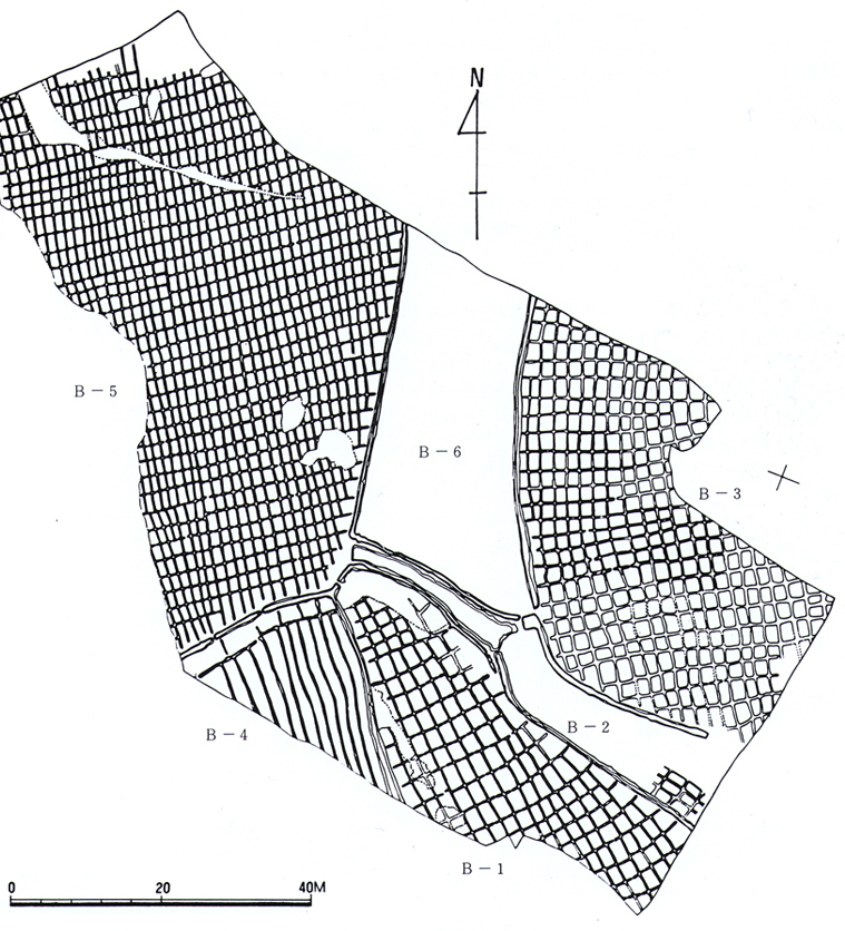 Fig. 06 - Plan of excavation area B at Ofuro, Gunma prefecture.